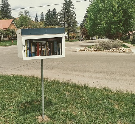 a neighborhood book exchange on the corner of a neighborhood intersection
